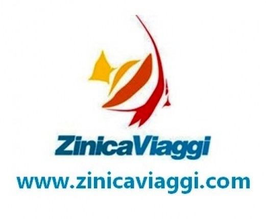 logo-zinica