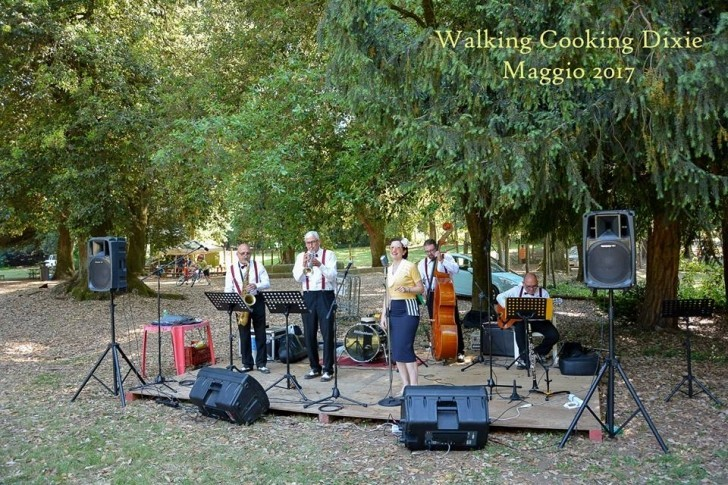 fire-dixie-swing-group-3